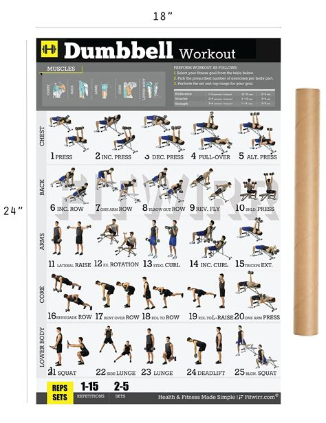 fitwirr s dumbbell workout exercise poster quot 18x24