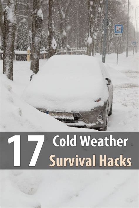 Philosophy Winter Weather Survival Kit by 25 Best Ideas About Winter Survival On Large
