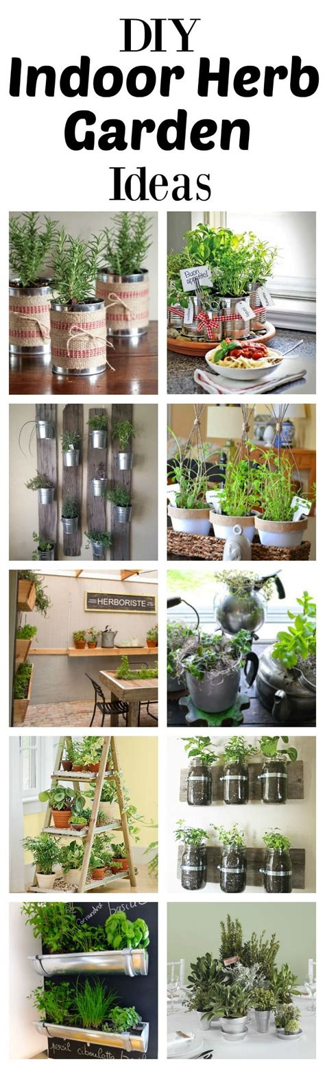 indoor kitchen garden ideas 25 b 228 sta growing herbs indoors id 233 erna p 229