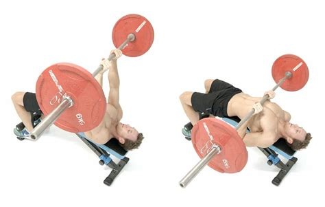 is decline bench important is decline bench important 28 images muscle strength