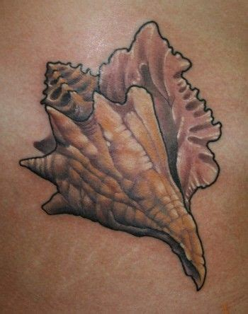 seashell tattoo meaning shells chris reed conch shell on the hip