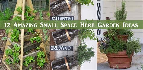 small herb garden design photograph cool very attractive d herb garden designs herb garden design plan hgtv