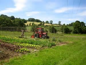 River Cottage Gardens - trill farm garden theorganicvegetablegrower