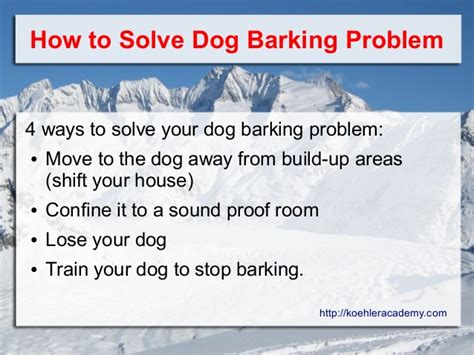 how to teach any dog to stop barking humanely effectively 11 reasons why your dog barks