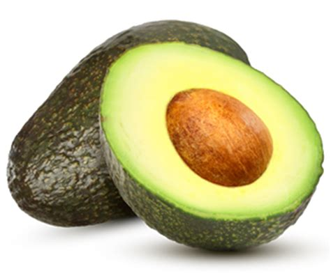 dogs eat avocado can i feed my avocado friendly food