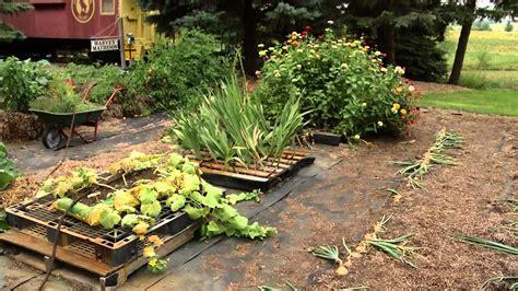 prairie yard garden straw bale and pallet gardening