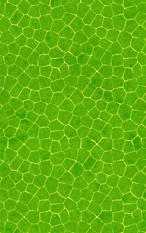 pattern mobile html alligator skin wallpaper wallpapersafari