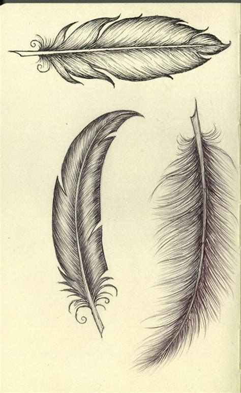 tattoo feather wings feather tattoo stencils wings feathers pinterest