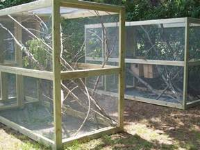 backyard pens outdoor pens outdoor squirrel cages projects to try