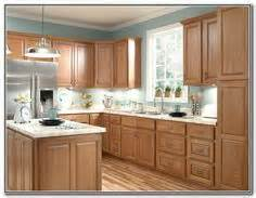 Kitchen Wall Colors With Light Wood Cabinets by 1000 Ideas About Staining Oak Cabinets On Pinterest Gel