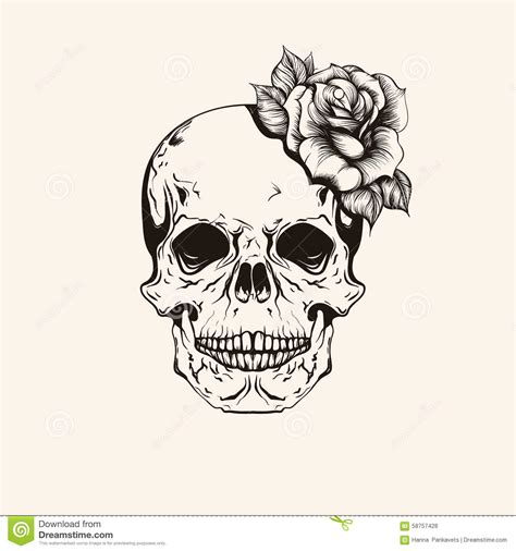 hand drawn sketch scull with rose tattoo line art vintage