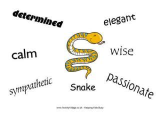 new year characteristics of the snake characteristics poster