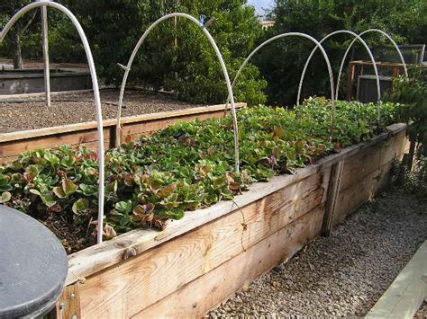 raised bed vegetable garden plans build a roof on your raised vegetable garden
