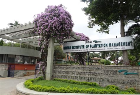Iipm Bangalore Fee Structure For Mba by Indian Institute Of Plantation Management Iipm