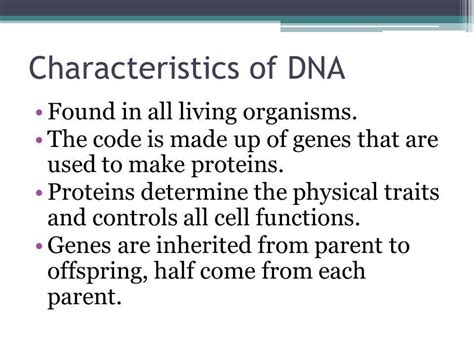 section of dna that codes for a trait the dna connection ppt video online download