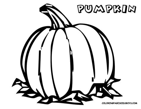 free pumpkin coloring pages preschoolers pumpkin coloring pages for kids free coloring pages for kids