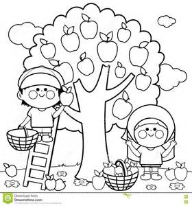 children harvesting apples coloring book stock vector image 75281529