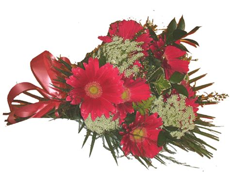 Gkm Flower Pink south africa flower delivery localstreet south africa