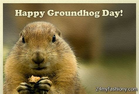 groundhog day 2016 groundhog day images 2016 2017 b2b fashion
