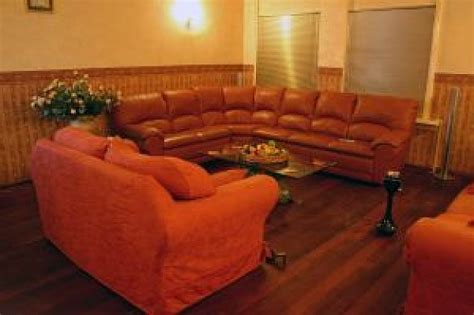 fleas in leather couch romantic interior photo free download