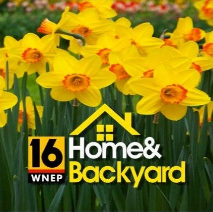 Home And Backyard Wnep Wnep S Home Amp Backyard Home And Garden Tv Show Http Www