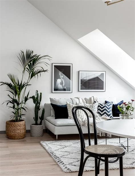 best plants for living room 26 plant living room living room plants on vaporbullflcom