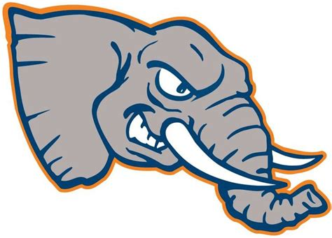 cal state fullerton colors 179 best team logo research images on team