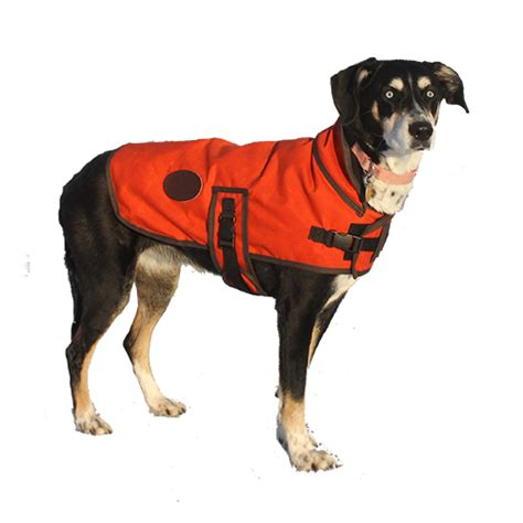 puppy vest vest river