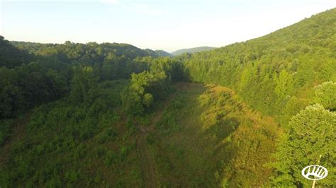 Little Sand Valley Hunting And Timber Property In AL   Collinsville   Whitetail Properties