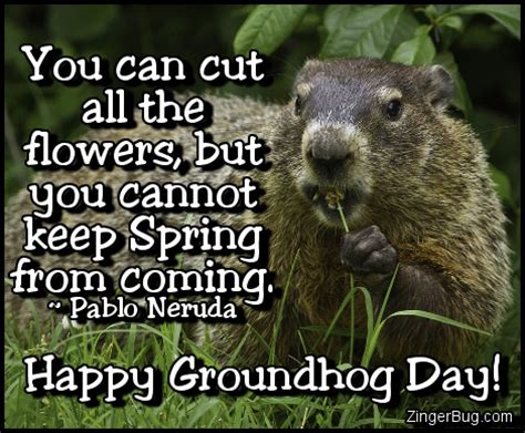 groundhog day slang meaning happy groundhog day pablo neruda quote glitter graphic