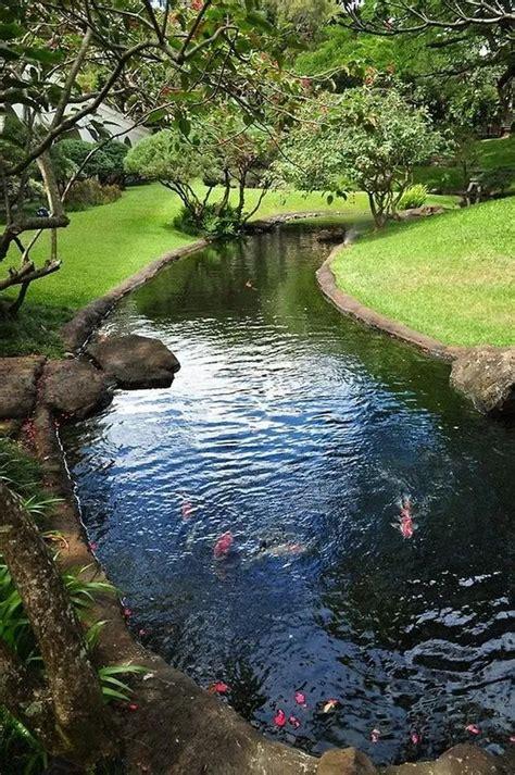 backyard bassin 43 best bassin tang images on pinterest backyard ponds