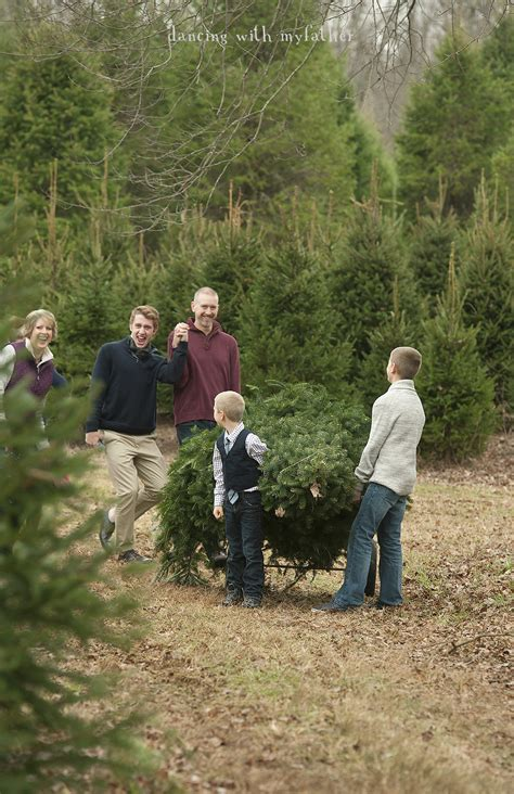 best 28 christmas tree farm nj the ultimate guide to