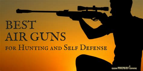 Best Guns For Home Defense by The 13 Best Pellet And Bb Air Guns For And Self