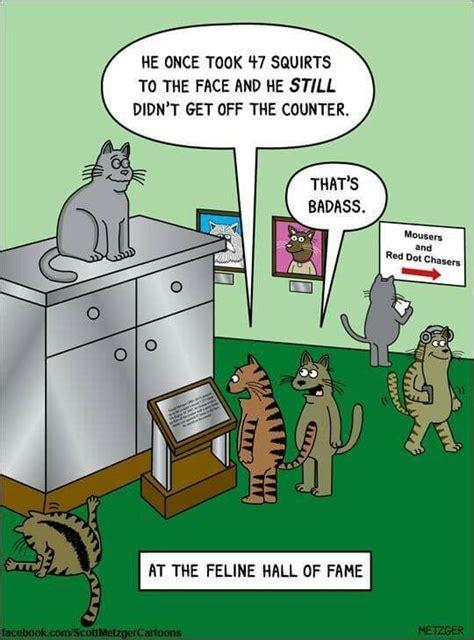 Cartoon Cat Memes - 4660 best cats gotta love fur babies images on