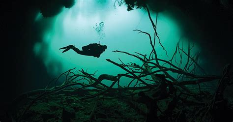 best diving locations in the world the best scuba diving locations in the world scuba diving