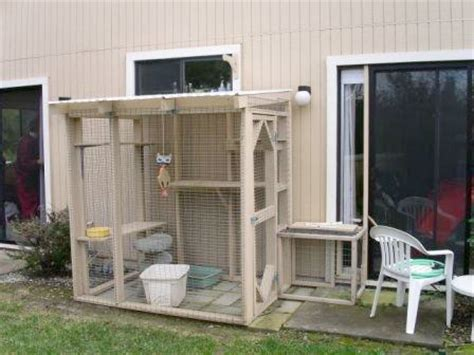 Cat Patio Door by Cheap Outdoor Cat Enclosures Zozeen