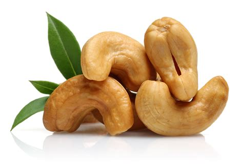 Cashew Nut cashew driverlayer search engine