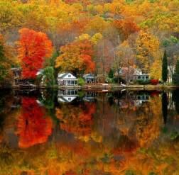falling colors fall colors tinley park photo album 187 topix