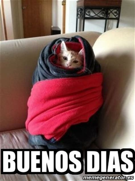 imagenes chistosas de buenos dias con frio buenos dias frio meme risa gato gatos pinterest memes