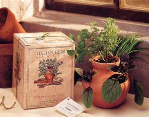 Herb Garden Gift Ideas Italian Herb Garden Kit Findgift