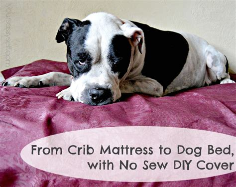 diy dog bed no sew from crib mattress to dog bed with no sew diy cover your