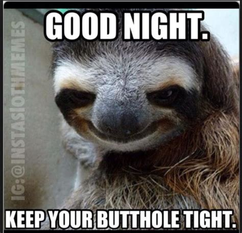 Scary Goodnight Meme - good night creeper sloth pinterest night and good night