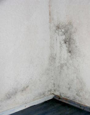 schimmelbefall im schlafzimmer weisser brauner schwarzer gr 252 ner schimmel an der wand