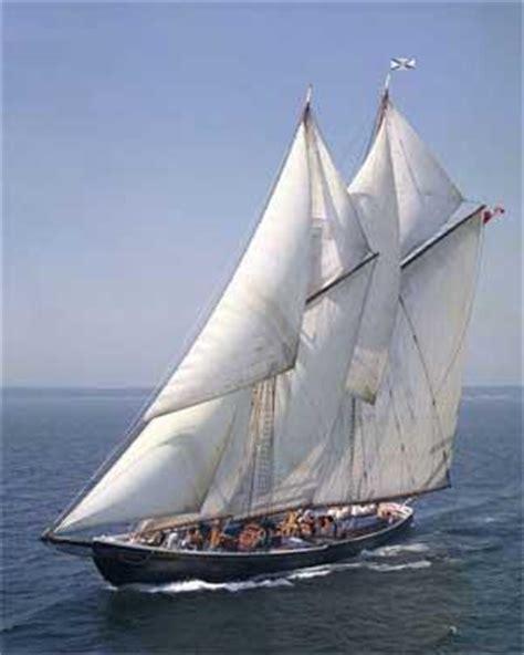 panga boat canada panga boats nova scotia and a reprise of the banana fleet