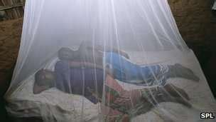 net on bed photography pinterest uk funded mosquito nets used malaria project mosquito net