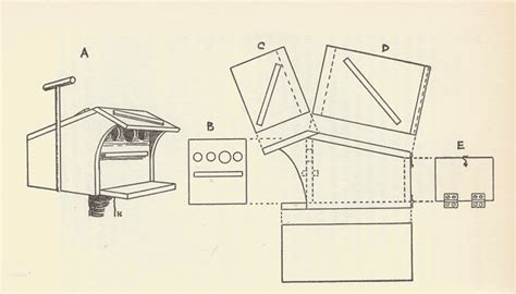 tree swallow house plans tree swallow birdhouse plans download wood plans