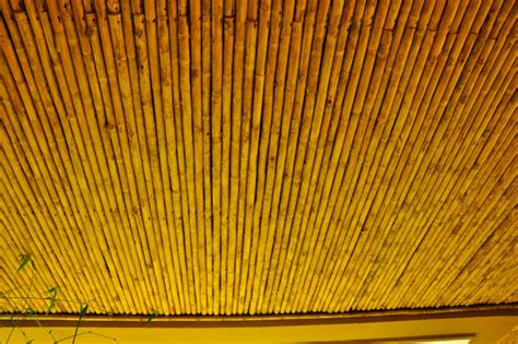 Bamboo Ceiling Book by Golden Bamboo Ceilings