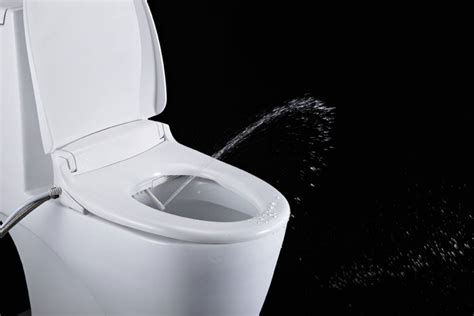 Bidet Meaning by Things Almost Every International Student Will