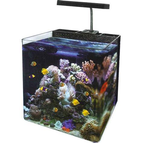 Nano Reef Tank 34 Litre  Amazing Amazon