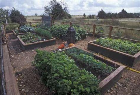 Houston Vegetable Gardening Fall Vegetable Planting Guide Houston Chronicle